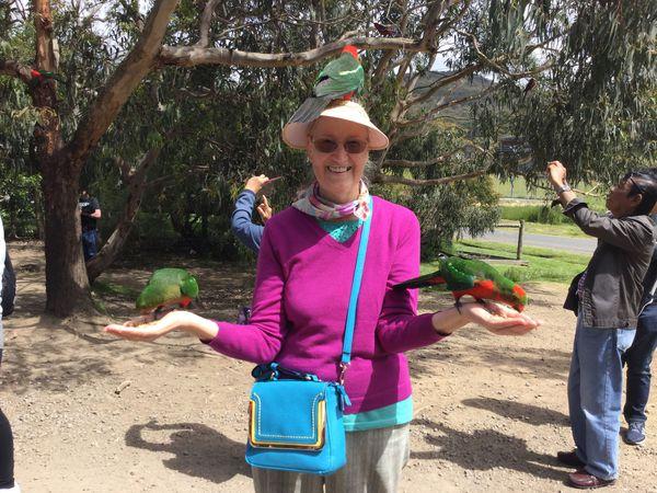 Австралия!!! Впечатления о поездке!!! | Ярмарка Мастеров - ручная работа, handmade