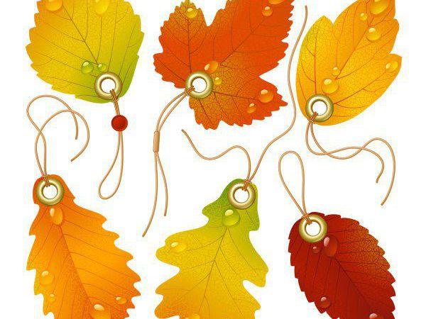 Многолотовый аукцион! Осенний ценопад   Ярмарка Мастеров - ручная работа, handmade