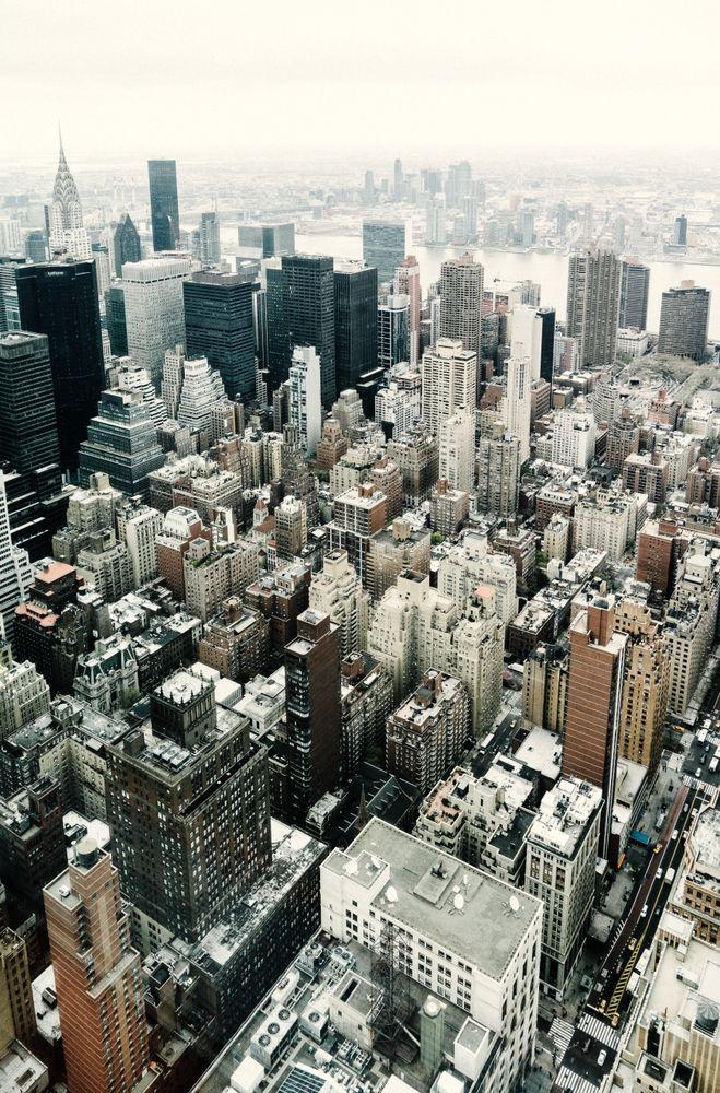 дизайн, govori project, манхеттен, new york public library