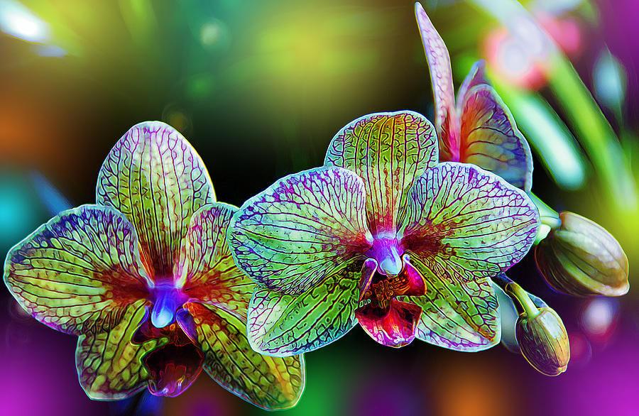 онлайн обучение, объемная вышивка, бисероплетение, ирина руднева, цветок, орхидея, вышивка бисером, индивидуальное обучение, супер украшение, сказочный цветок
