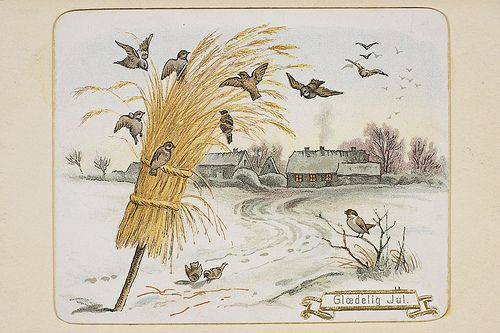 """Norwegian Christmas Tradition – 'Julenek' - Vintage Christmas card, National Library of Norway: """"BIRDS are an important part of Christmas in Norway. On Christmas Eve, sheaves of wheat or oats are tied to a post or hung on the door, to feed the birds on Christmas morning."""" LISTEN to a charming 2 min. podcast!  (In Sweden, this tradition is called 'Julkarve'.) <a href="""