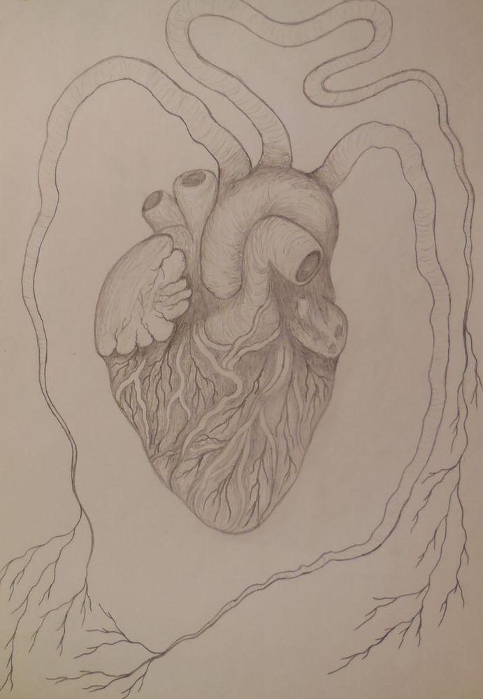 эскиз, рисование