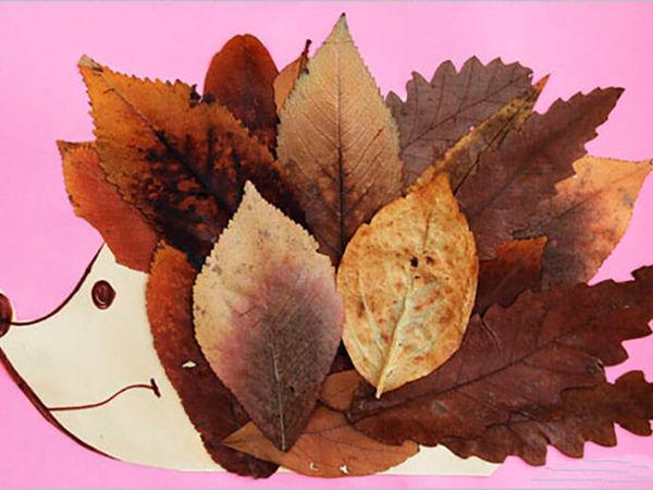 Сколько у осени цветов