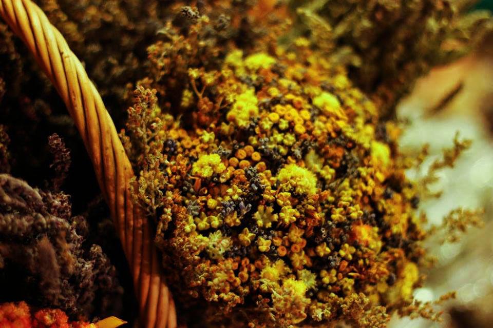 выставка, крымские травы