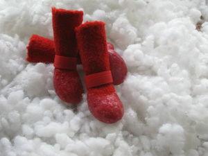 Мерки для изготовления валяной обуви для собак. Ярмарка Мастеров - ручная работа, handmade.