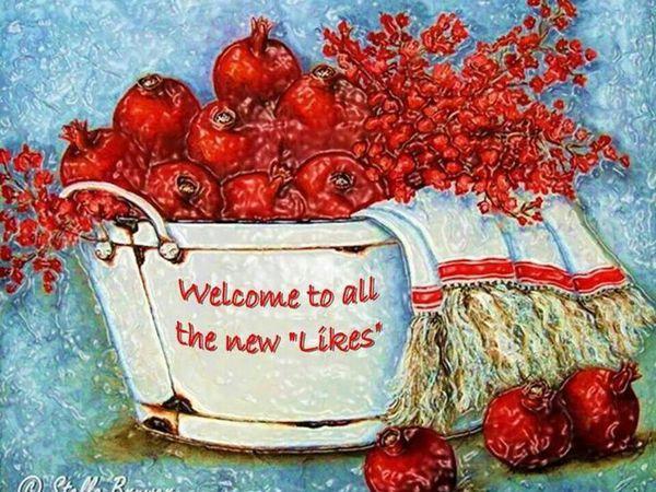 «У цветов не бывает будней, они всегда одеты празднично!» Stella Bruwer и её акриловые картины | Ярмарка Мастеров - ручная работа, handmade