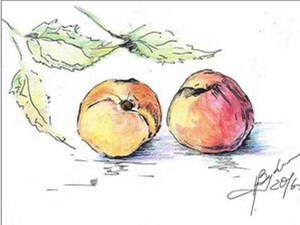 Аукцион с нуля на летние зарисовки у Леди N! | Ярмарка Мастеров - ручная работа, handmade