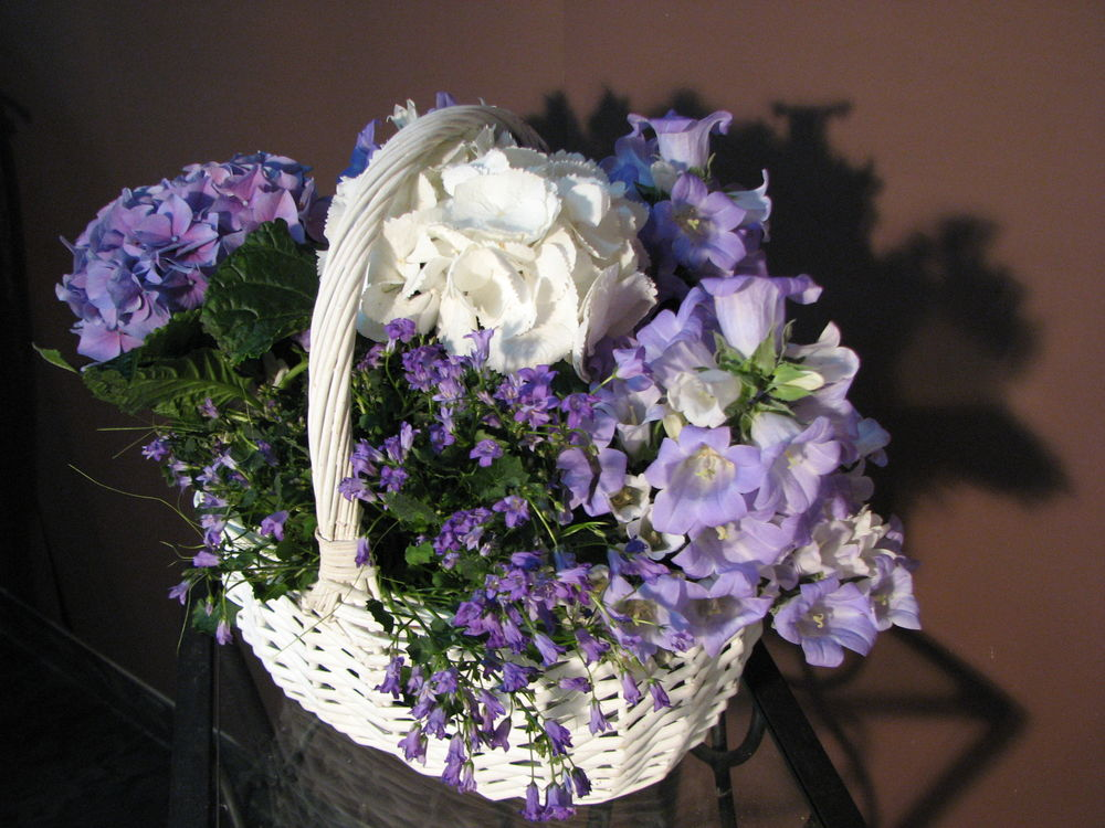 цветы, крокусы, на заказ
