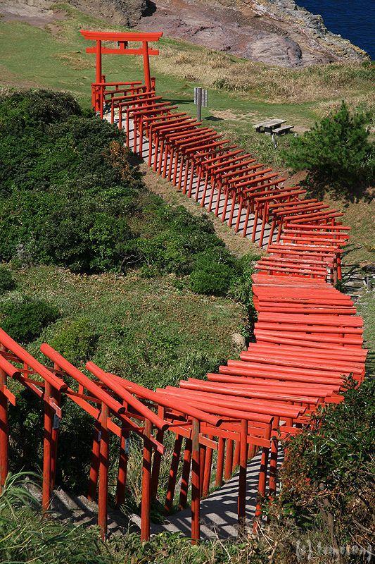 Torii - Motonosumi Inari Shrine, Nagato, Yamaguchi, Japan