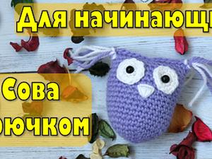 Вяжем забавную сову крючком: видеоурок для начинающих. Ярмарка Мастеров - ручная работа, handmade.