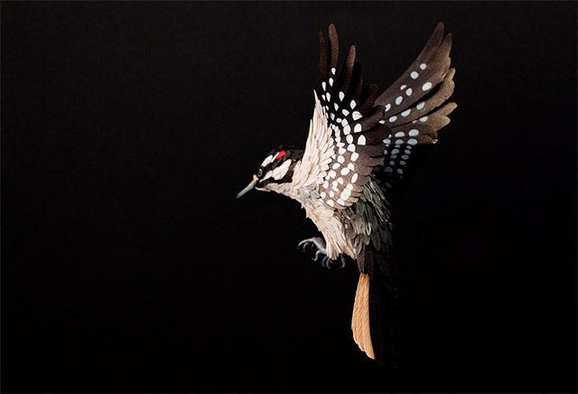 бумажные птицы