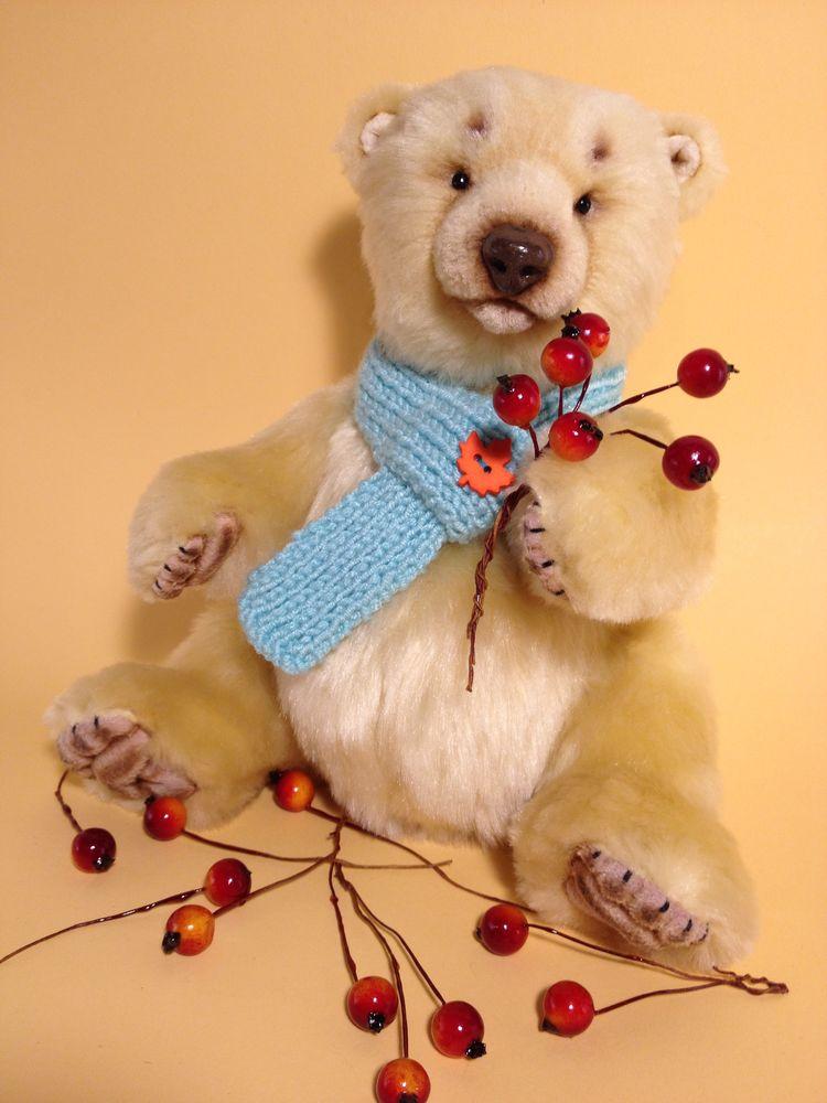 медведь натюр