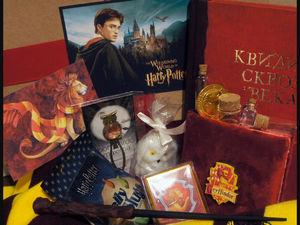 Набор  «Гарри Поттер». Ярмарка Мастеров - ручная работа, handmade.