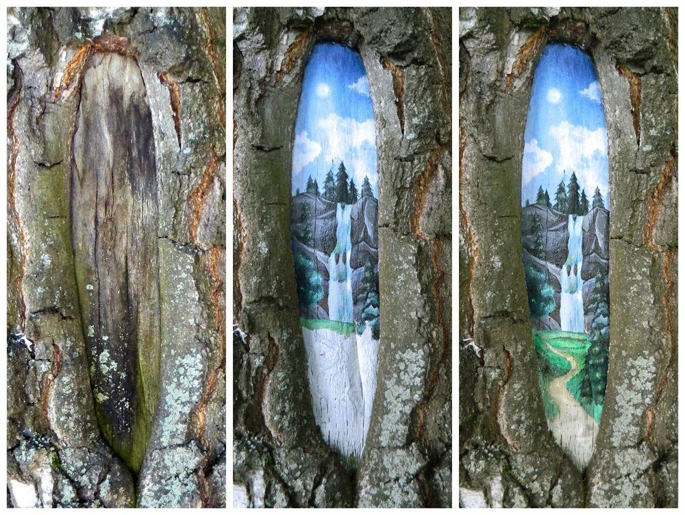 рисунки на деревьях, лес, природа, пруд