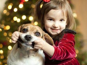 О детях, собаках и игрушках. Ярмарка Мастеров - ручная работа, handmade.