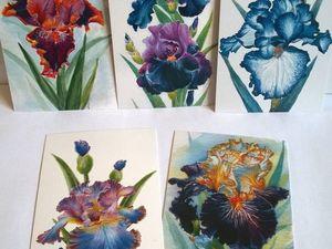 Распродажа почтовых открыток! Все открытки по 10 руб! Только 3 дня!!!!. Ярмарка Мастеров - ручная работа, handmade.
