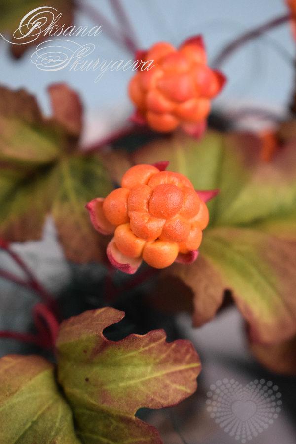 ягоды морошки, ревелюр