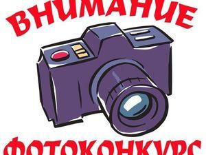 Конкурс фотографий! Голосуем!!!. Ярмарка Мастеров - ручная работа, handmade.