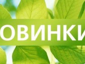 Пятница. Ода зеленому цвету!. Ярмарка Мастеров - ручная работа, handmade.