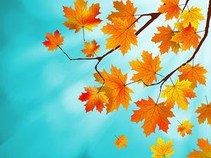 """Коллекции и ссылки к аукциону """"Осенний марафон"""". Ярмарка Мастеров - ручная работа, handmade."""