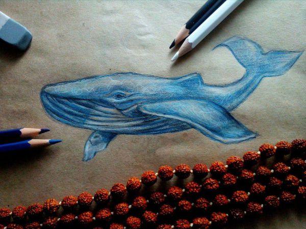 Рисуем кита цветными карандашами на крафт-бумаге   Ярмарка Мастеров - ручная работа, handmade