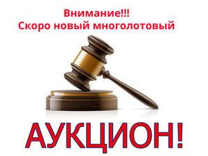 Анонс Нового аукциона с мастером Любовью!!!. Ярмарка Мастеров - ручная работа, handmade.