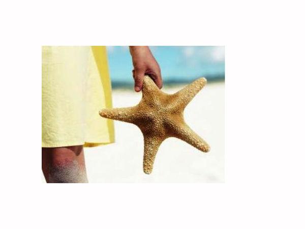 Я подарю тебе звезду! | Ярмарка Мастеров - ручная работа, handmade