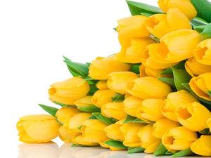 Жёлтые тюльпаны в моем магазине! | Ярмарка Мастеров - ручная работа, handmade