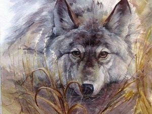 Как писать портрет волка акварелью. Ярмарка Мастеров - ручная работа, handmade.