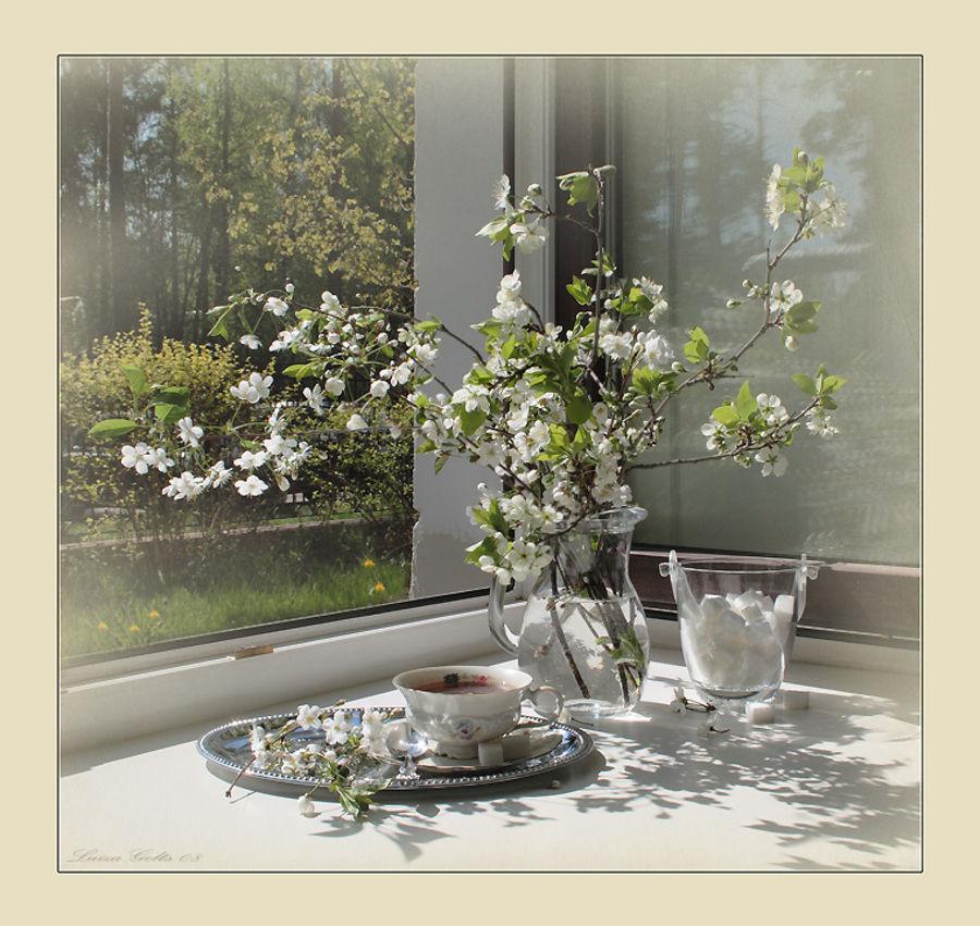 весна, мыльная фея, радость
