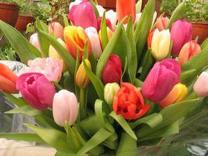 Поздравляем с наступающим 8 Марта!!! | Ярмарка Мастеров - ручная работа, handmade