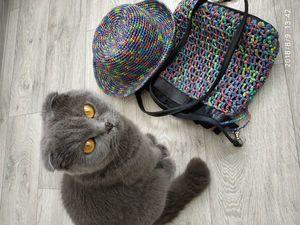 Шляпа и сумочка из рафии. Ярмарка Мастеров - ручная работа, handmade.
