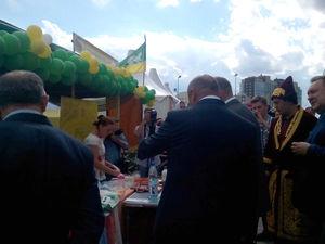 О том, как я рассказала Б.Дубровскому(Губернатору Челяб.обл) о валянии!. Ярмарка Мастеров - ручная работа, handmade.