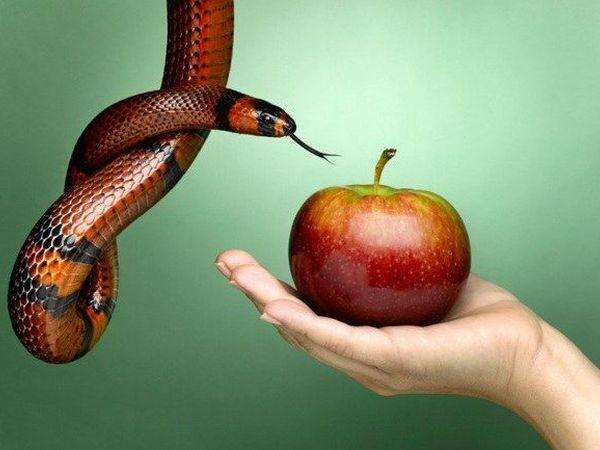 Яблоко - искушение и раздор | Ярмарка Мастеров - ручная работа, handmade