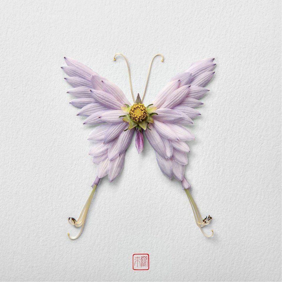 Petal Magic: Unusual Compositions by Raku Inoue, фото № 11