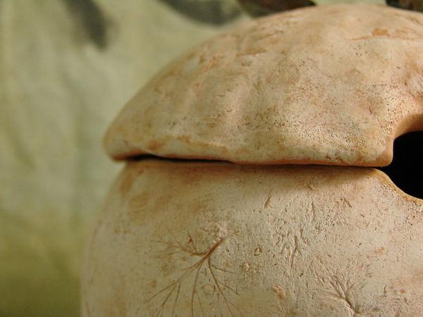 Кембрийская глина | Ярмарка Мастеров - ручная работа, handmade