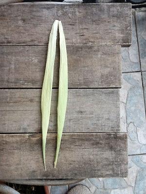 поделки из кукурузы