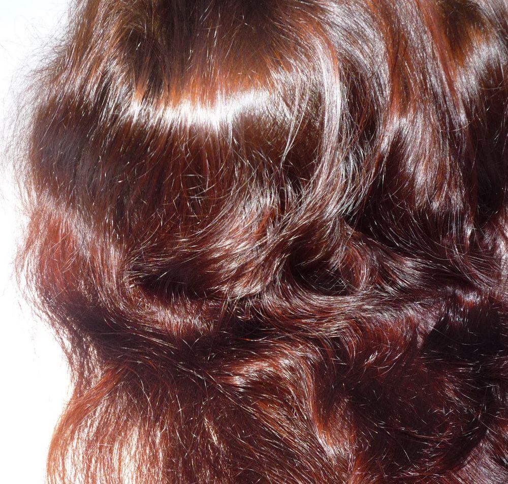 львиная грива, красим волосы хной