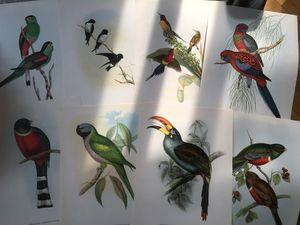 Новинки! Литография, цветная печать. Ярмарка Мастеров - ручная работа, handmade.