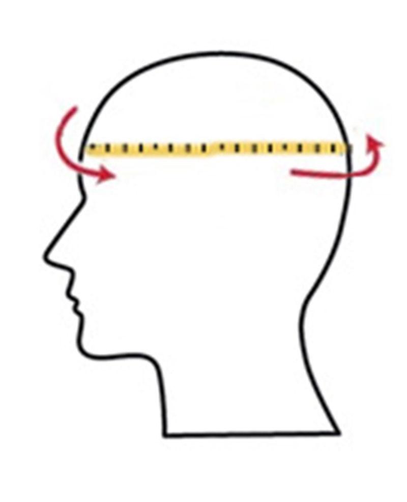 окружность головы, размер шляпы