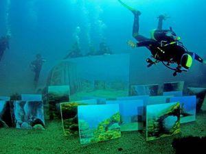 Картины, нарисованные на дне морском, или Для творчества нет пределов и преград!. Ярмарка Мастеров - ручная работа, handmade.
