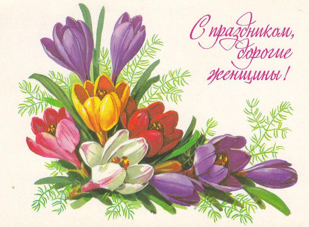 зайти в открытки к марта махровые, нежно-розового