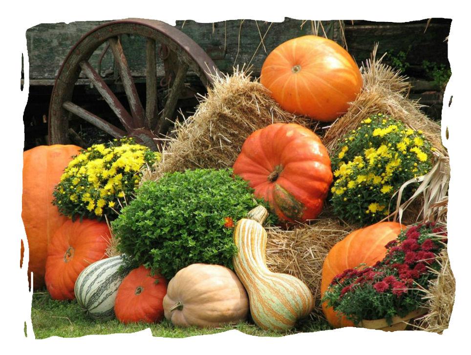 лугнасад, лунный календарь, урожай