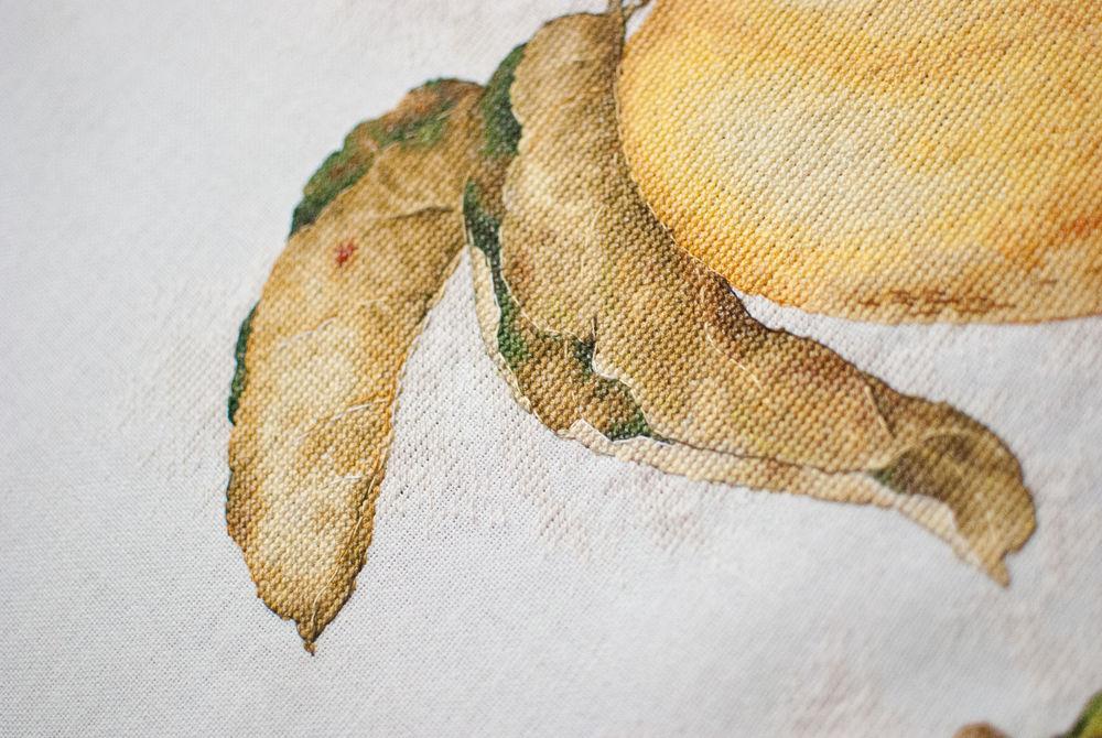 фрукты, барокко