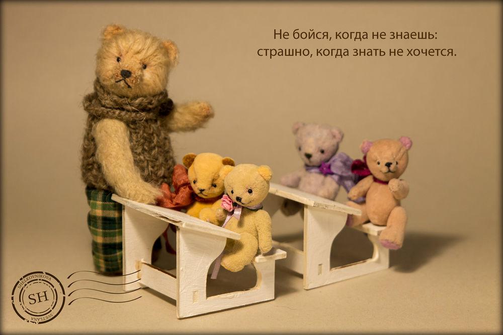мишки тедди, мишки тедди купить, авторские мишки тедди, ручная работа, мишки тедди в школе, мишки тедди ученики, мишки тедди за партой, мини мишки тедди, миники, миниатюрный мишка, миниатюра, авторский мишка тедди, мишка тедди маленький, миниатюрный мишка тедди, мишки тедди своими руками, авторский тедди, мишка тедди купить, мишка тедди, мини мишка тедди, миник