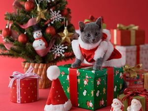 Декабрь - время подумать о подарках. Ярмарка Мастеров - ручная работа, handmade.