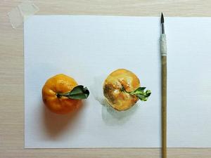 Рисуем акварелью мандаринку с натуры: видео мастер-класс. Ярмарка Мастеров - ручная работа, handmade.