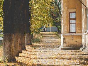Вдохновение осенью. Ярмарка Мастеров - ручная работа, handmade.