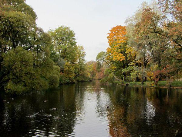 Осенний пруд. Фотокартина | Ярмарка Мастеров - ручная работа, handmade