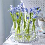 spring-flowers-new-ideas-muscari1.jpg